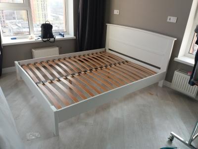 Ліжко Бегонія (Бук щит)